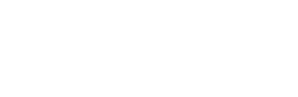 SDMN logo - State Debt Management Network